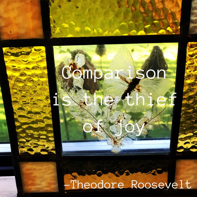 Comparison is the thief of joy Theodore Roosevelt